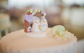 Terranea Resort Wedding, Erich Chen, Spring Wedding, Love Birds