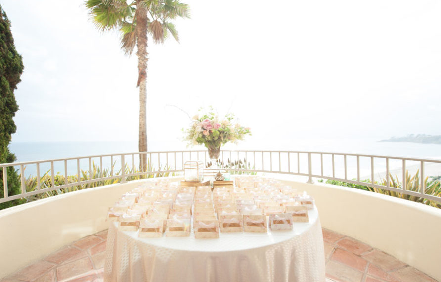 23-ritz-carlton-laguna-niguel-wedding-by-jana-williams-escort-cards