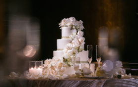 24-millennium-biltmore-wedding-by-chris-of-lin-jirsa_reception-details-cake-892x594